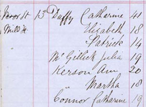 Extract from a census conducted by a parish priest