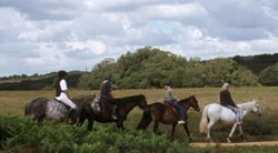 Photo of horse riders in the New Forest
