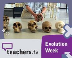 Evolution week