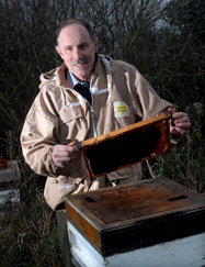 Poetry competition finalist Rowland Molony with his beehives