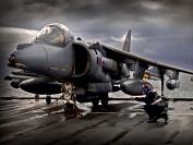 Harrier 04122138