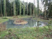 One of the many ponds