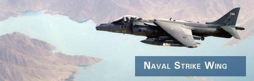 Naval Strike Wing