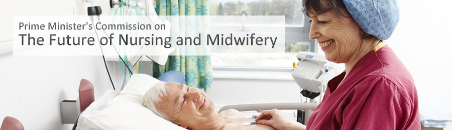 The Future of Nursing and Midwifery