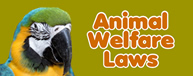 Animal Welfare Laws