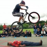 willow_lane_cycle