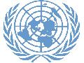 Dangerous Goods UN Logo