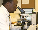 Laboratory technician in pathology department looking through microscope