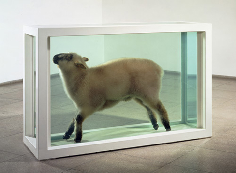 Damien Hirst: Away From the Flock
