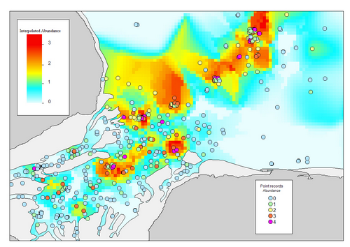 GMHM1-05 Interpolated density map.png
