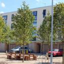 Icon - Lime Tree Square. Photo by Knightstone Housing Association