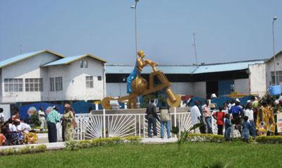 Golden Chuckadoo in Goma