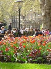 People sitting in a sunny park