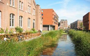Green infrastructure in Amsterdam.