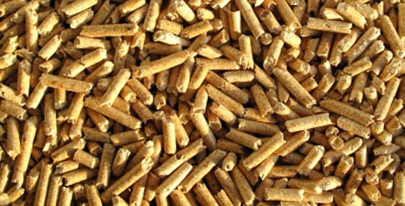 Environmental technologies - The most dominant region for biomass production