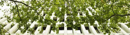 Office building with green trees