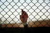 Prisoner's hand holding onto fence (© Getty images)