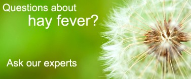 Ask an expert about hay fever in our open clinic