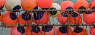 Shipping buoys