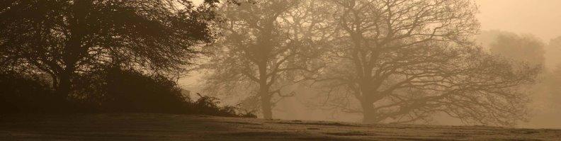 early_morning__roundhill.jpg