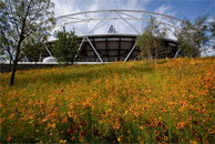 London 2012 Olympic stadium surrounded by wild flowers (© London 2012)