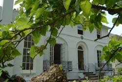 Keats House from behind the Mulberry tree
