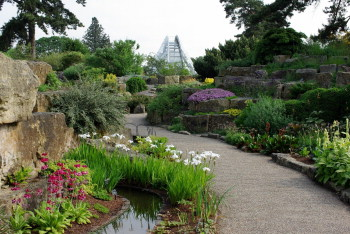 Looking north towards the Davies Alpine House from the Rock Garden