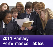 2011 Primary Performance Tables