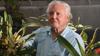 Sir David Attenborough in the orchid room at Kew Gardens