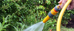 Hosepipe bans in south and east England