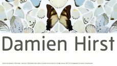 Damien Hirst exhibition banner
