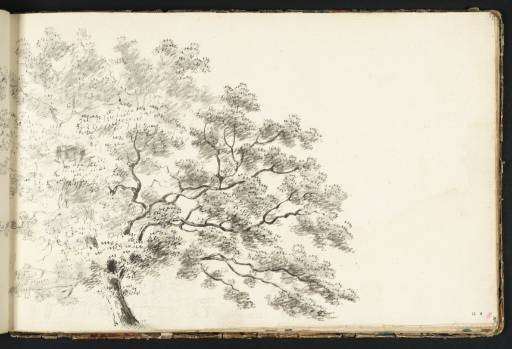 Joseph Mallord William Turner, 'Study of a Tree, with a Line of Trees Beyond' circa 1789