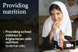 providing nutrition