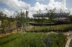 View across the London 2012 Gardens to the Olympic Stadium (© Crown Copyright, DCMS)