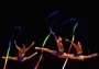 Belarus perform in the Rhythmic Gymnastics final