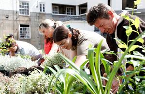 Volunteers working in a garden