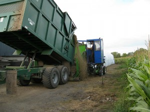 AgBagging of harvested biomass off Catcott Lows, Somerset, for drying and storage