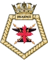 RFA Diligence