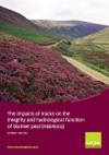 The impacts of tracks on the integrity and hydrological function of blanket peat (Thumbnail link to record)