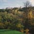 River Cliff on Box Hill (Mole Gap To Reigate Escarpment SSSI) Surrey © Natural England/Peter Wakely