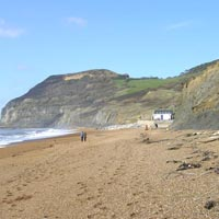 West Dorset Coast SSSI, part of the Jurassic Coast World Heritage Site
