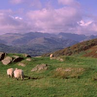 View across the Lake District