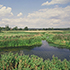 River Wensum © Peter Wakely/Natural Englland