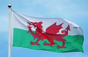 """Wales flag"""