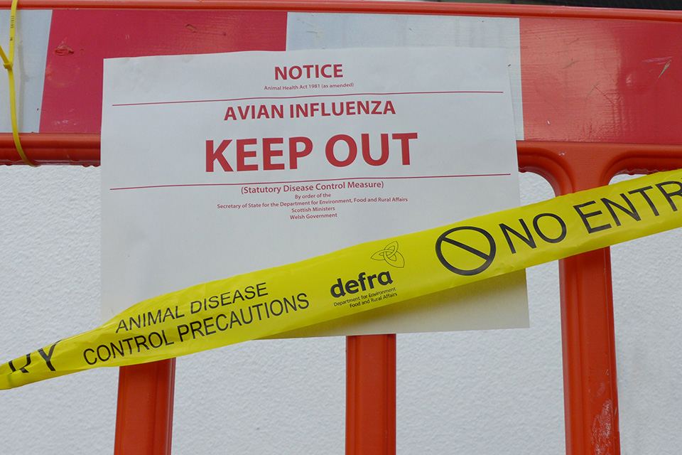 I'm a civil servant and I… work with exotic diseases
