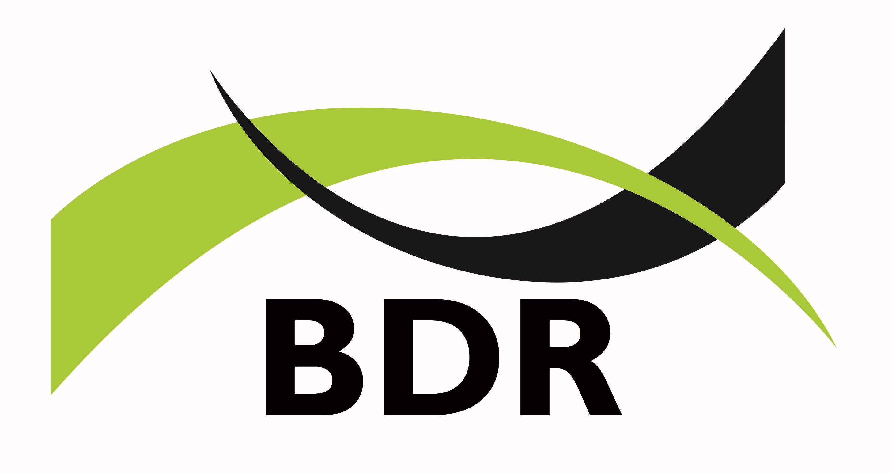 new bdr logo green