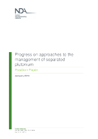Progress-on-approaches-to-the-management-of-separated-plutonium-position-paper-January-2014
