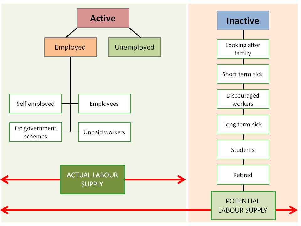 Illustration of labour market status brekadown