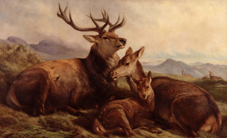 Samuel John Carter, 'Morning with the Wild Red Deer' 1876