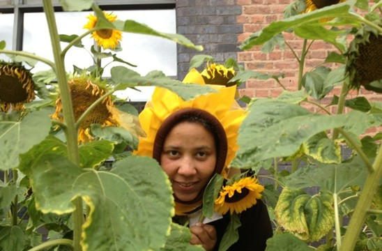 Turing Sunflower comes to life